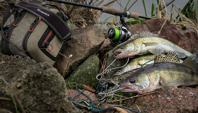 Какую рыбу можно поймать на спиннинг в июле.jpg
