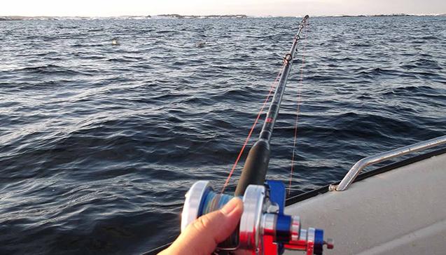Какие спиннинги используют для рыбалки на море.jpg