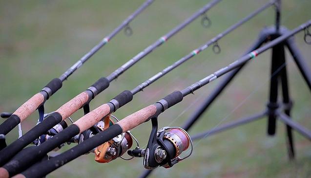 Лучшие удочки для летней рыбалки.jpg