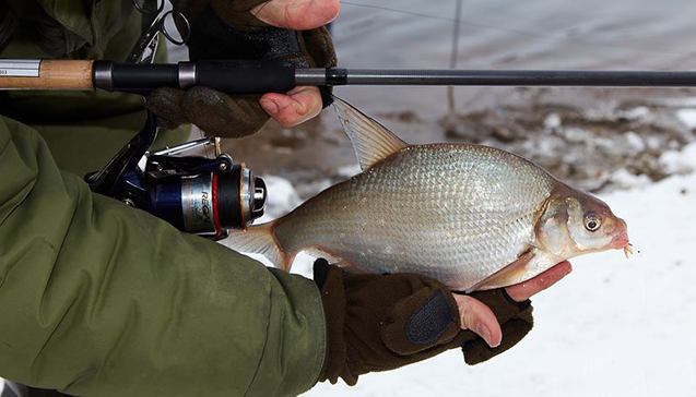 Рыбалка с удилищами Sabaneev.jpg