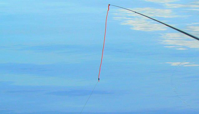 Рыбалка на маховую удочку.jpg
