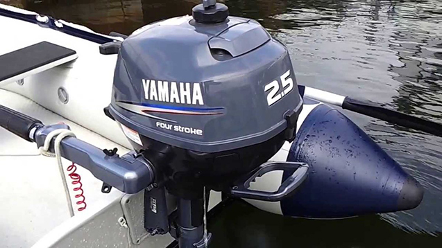 Лодочный мотор Yamaha 2.5-main.jpg