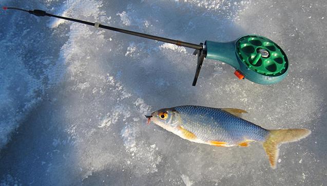 Зимняя рыбалка на удочки Stinger.JPG