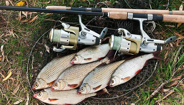 Ловля разных видов рыб осенью.jpg