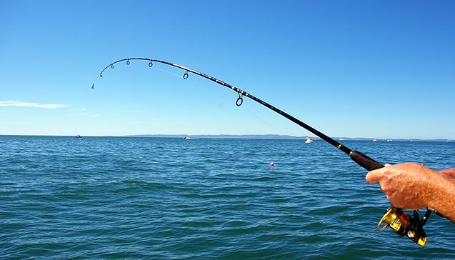 Выбор спиннинга для ловли с лодки.jpg